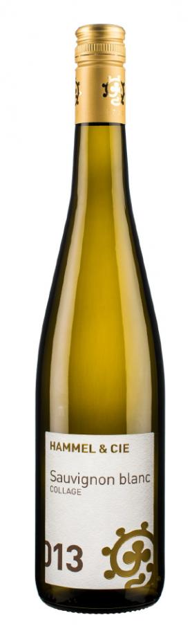 Weingut Hammel,2014er Sauvignon Blance Collage, *SCOUT*